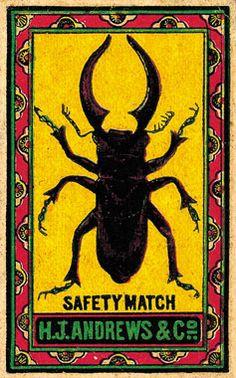 Safety match