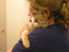 Dumped Kittens getting Rehab.