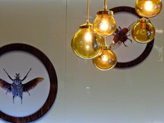 Imágenes para buscar la lámpara perfecta