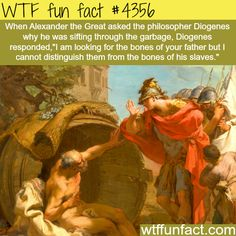 Alexander the Great meets Diogenes -  WTF fun facts