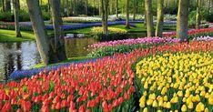 9 Picture-Perfect Gardens Around the World #purewow