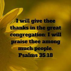 Psalm 35:18