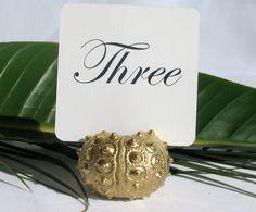 Gold  Sea Urchin Table Number Holder-Set of 10. Need custom order of 20 via Etsy.