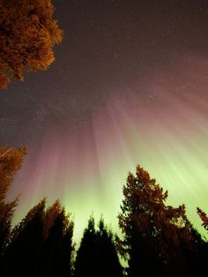 Auroras tower over Lumby, British Columbia, in a picture submitted to the astronomy-education project The World At Night (TWAN) on October 9.