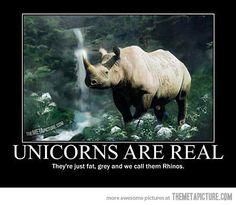 Unicorns are real…
