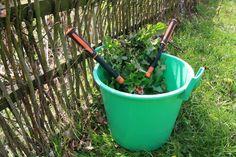 Když kopřivy nastříháte, hnojivo bude hotové dříve