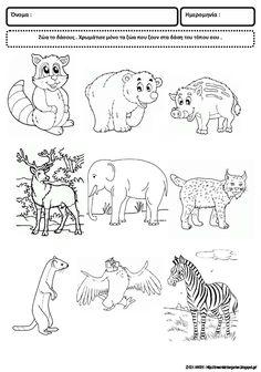 Το νέο νηπιαγωγείο που ονειρεύομαι : Φύλλα εργασίας για το δάσος Polar Animals, Jungle Animals, Coloring Books, Coloring Pages, Alphabet Activities, Animal Crafts, Stencils, Kindergarten, Diagram