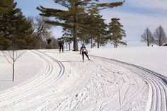 Come enjoy our miles and miles of beautifully groomed trails at Pleasant View Golf Course!