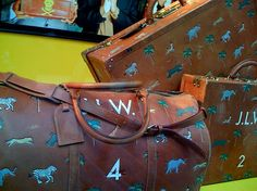 Darjeeling Limited Luggage