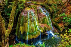 Bigar Waterfall is located in the municipality Bozovici of Caras-Severin County, just outside the National Road The Beautiful Country, Beautiful World, Chutes Victoria, Places Around The World, Around The Worlds, Brasov Romania, National Road, Romania Travel, Nature Images