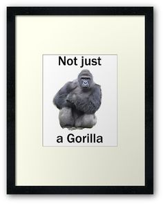 "Harambe ""not just a gorilla"" graphic"
