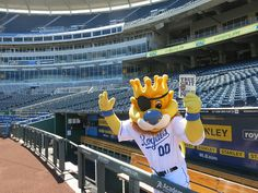 Even Sluggerrr is reading True Grit! @The Big Read http://kcbigread.org #KansasCityRoyals #KansasCity #Royals