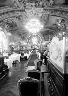 ♔ Le Train Bleu ~ Paris