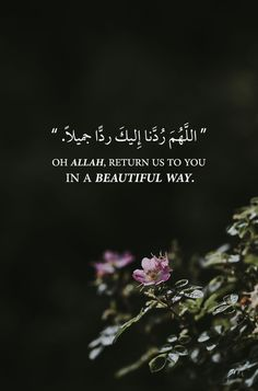 Discovered by Nader Dawah. Find images and videos about text, islam and arabic on We Heart It - the app to get lost in what you love. Hadith Quotes, Allah Quotes, Muslim Quotes, Religious Quotes, Islamic Phrases, Islamic Love Quotes, Arabic Quotes, Hindi Quotes, Quotations