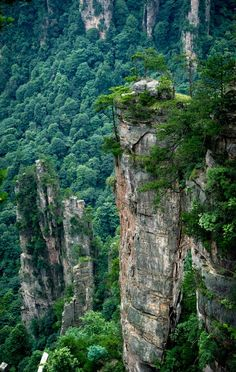 Rock Spires, Hunan, China  photo via jenna
