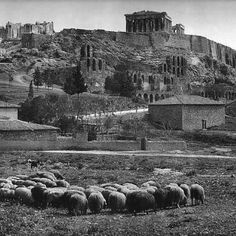 Acropolis 1880