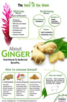 Health Remedies Survival Pharmacy: 9 Ways To Use Ginger For Your Health Tomato Nutrition, Health And Nutrition, Health Tips, Salmon Nutrition, Proper Nutrition, Nutrition Education, Herbal Remedies, Health Remedies, Natural Cures