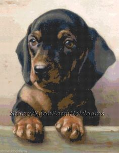 Dachshund Puppy ~ Dogs ~ Counted Cross Stitch Pattern ~ PDF on CD #StoneyKnobFarmHeirlooms #CountedCrossStitch