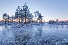 Frozen by martinkoitmae. Please Like http://fb.me/go4photos and Follow @go4fotos Thank You. :-)