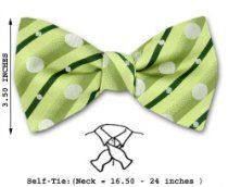 FBTT-8601 - Green - Silver - Mens Big and Tall Self Tie Bow Tie