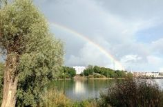 Blogit | Suomen Luonto