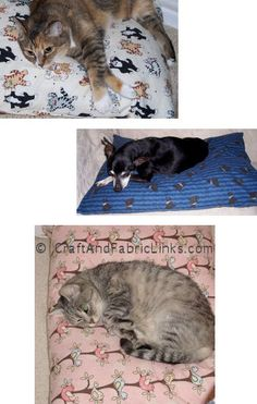 Sew a decorative pillowcase that your pillow will not fall out of. Also popular with pet shelters. Works perfectly for a pet bed because pillow is easily removed for laundering of case. CraftAndFabricLinks.com