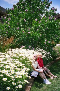 Holden Arboretum in Kirkland, Ohio, with Jenny & Sue. Highly recommend, especially if you enjoy hiking. For those not fit, they also offer carts with humorous tour guides.