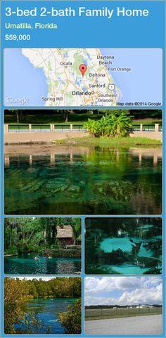 3-bed 2-bath Family Home in Umatilla, Florida ►$59,000 #PropertyForSaleFlorida http://florida-magic.com/properties/62307-family-home-for-sale-in-umatilla-florida-with-3-bedroom-2-bathroom