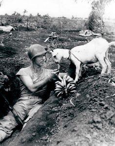 http://i.imgur.com/pO5sofA.jpg  GI feeding a goat in world war II