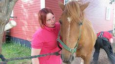 Tuurun Toivo our Finnhorse 11 years
