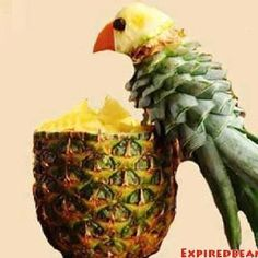 Pineapple Parrot More