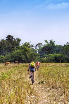 Luang Prabang cycling tour, explore the beautiful scenery and culture of Luang Prabang. Vinales, International Flights, Domestic Flights, Luang Prabang, Rainy Season, Beautiful Waterfalls, Delicious Dishes, The Locals, Laos