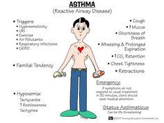 nursingnerds:  Asthma: Chronic inflammatory airway disorder characterized by…