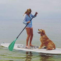 My Golden retriever SUP Pup!