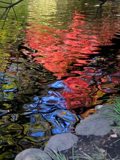 Image detail for -Water reflections