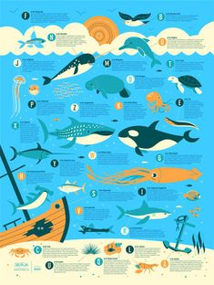 Ocean Alphabet by Dave Perillo. I don't think anyone understands how much I would LOVE this in my classroom!