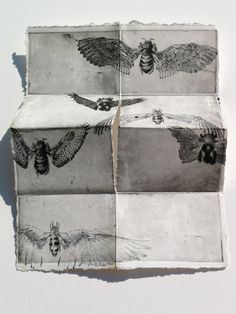 Birds and Bees, DIY Frenchfold by Lizzy DeVita.