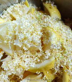 Mammaeco: Sciroppo di fiori di sambuco http://mammaeco.blogspot.it/2013/06/sciroppo-di-fiori-di-sambuco.html