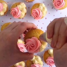Tired of buying ready-made cake and their classic images? So now it's your turn to create amazing cakes. Tired of buying ready-made cake and their classic images? So now it's your turn to create amazing cakes. Cake Decorating For Beginners, Cake Decorating Videos, Cookie Decorating, Cupcake Frosting, Cupcake Cakes, Mini Cupcakes, Frost Cupcakes, Buttercream Frosting, Flower Cupcakes