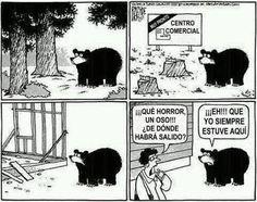 El chiste del oso