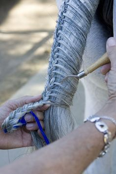horse tail braids | Get top tails for show hunters with step-by-step tail braiding tips.