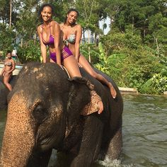 Sexy Women riding bareback barefoot in bikini on an Elephant in the Jungle/Sexy Frauen reiten sattelos barfuß im bikini auf einem Elefant im Dschungel .