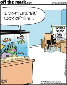 13 Comic Strips About The Funny Relationship Between Cats And Fishes - World's largest collection of cat memes and other animals Funny Animal Memes, Funny Animal Pictures, Cute Funny Animals, Funny Cute, Funny Memes, Memes Humour, Cat Humour, Funny Cartoons, Dog Cat