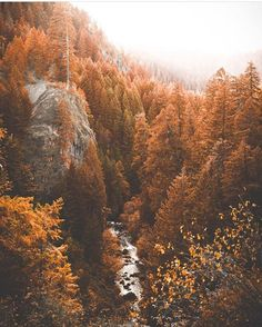 Tag who you& spending this fall with. Happy cuffing season Ya& Photo by The post Tag who you& spending this fall with. Happy cuffing season Ya& Photo by autumn scenery appeared first on Trendy. Beautiful World, Beautiful Places, Affinity Photo, Autumn Photography, Autumn Aesthetic Photography, Photography Tips, Landscape Photography, Travel Photography, Autumn Aesthetic Tumblr