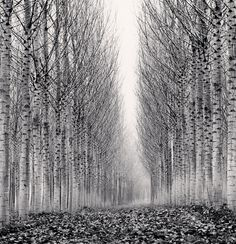 Photographer Michael Kenna on the current state of photography, wandering in a black and white world