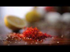 Cooking Odyssey Season 2 Opening