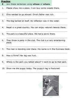 Grade 6 Grammar Lesson 10 Relative clauses (5)