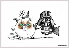 Darth Vader with Grumpy Cat