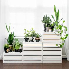 Clearing out the clutter? Looking to make a fresh start? We recommend organizing your space with the clean white lines of this DIY tiered plant stand. It's made from simple wooden storage crates that wejust painted and stacked. Add your botanical buddies for a lively, leafy finish.