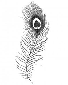Peacock feather tattoo - I would love to draw this design on for a photoshoot, could be so cute!